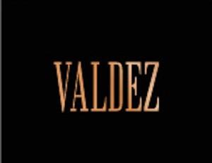 logo valdez
