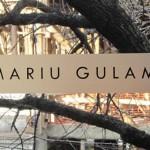 Mariu Gulam logo