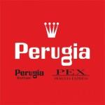 Perugia logo