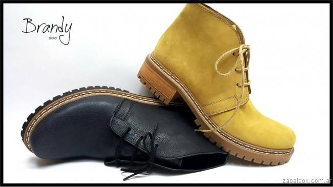 Borcego gamuzados - zapatos Brandy invierno 2017