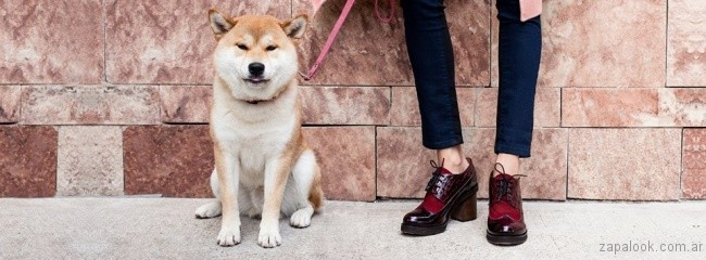 zapatos abotinados con tacos invierno 2017 - Cestfini