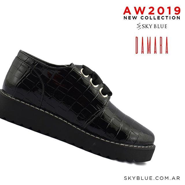 zapatos abotinado invierno 2019 Sky Blue
