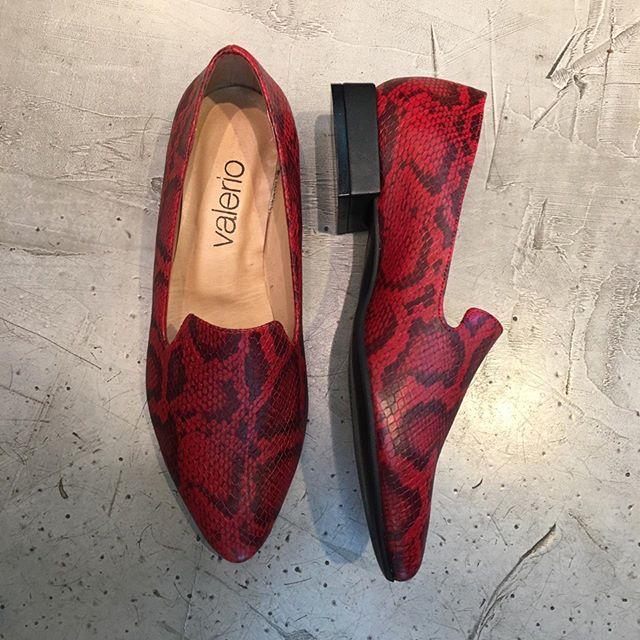 zapatos reptil invierno 2019 de Calzados Valerio