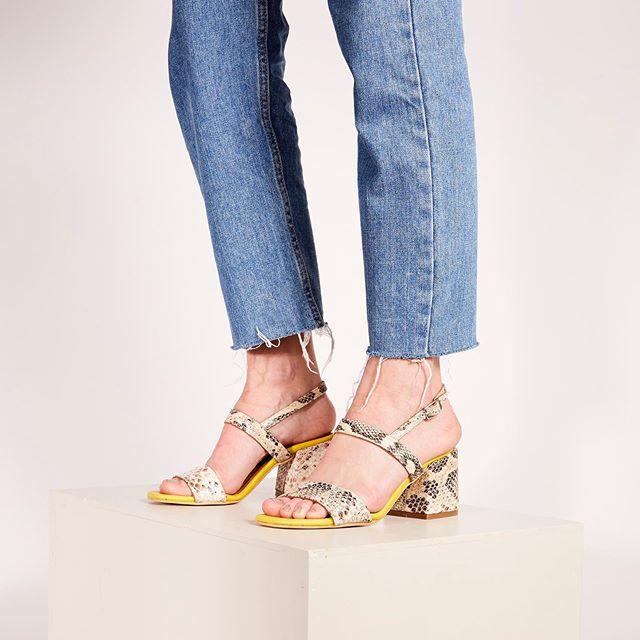 sandalias reptil verano 2020 Chao Shoes