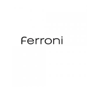 logo Ferroni